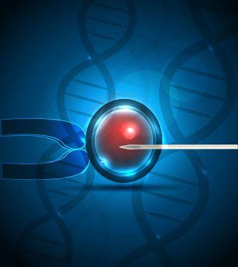sperm injection fertility treatment